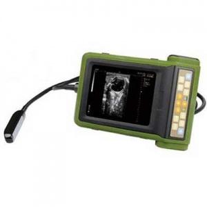 kaixin rku-10 vet ultrasound