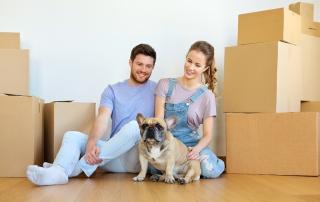 Stress-Free Moving—Pet Style
