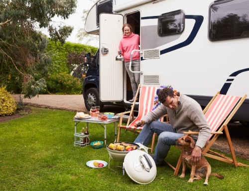 RVing:  Not Just For Humans Anymore